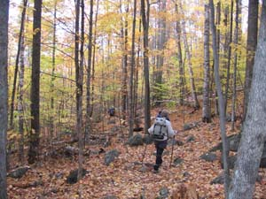 Windsor Trail (photo by Dennis Marchand)