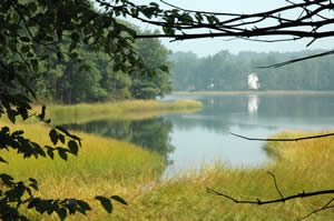Salt marsh cove at Bellamy River Wildlife Sanctuary (photo by Ben Kimball)
