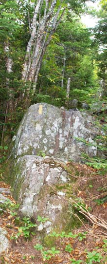 Rock scramble on Eastman Mountain Trail (photo by Webmaster)