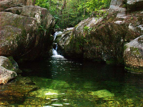 Emerald Pool (photo by Webmaster)