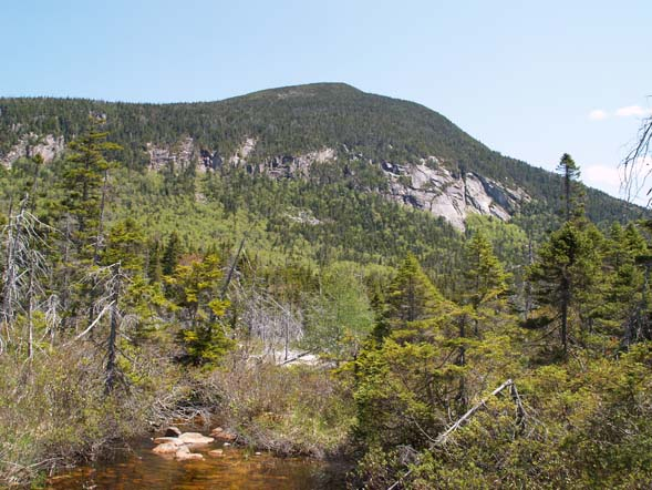 Mount Willey as seen from the western end (off trail) of Ethan Pond (photo by Webmaster)
