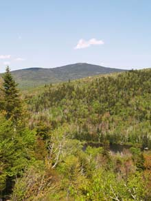 View from Whitewall Brook Outlook (photo by Webmaster)
