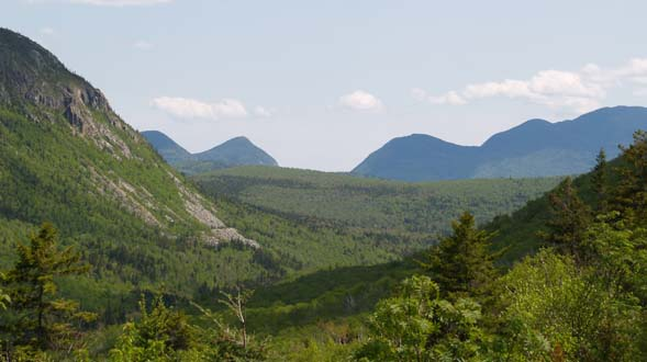View from the Whitewall Brook Outlook (photo by Webmaster)