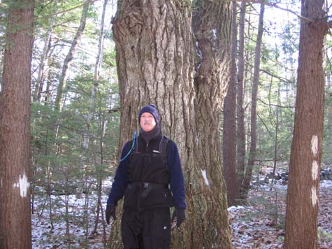 Mark in front of a big tree (photo by Dennis Marchand)