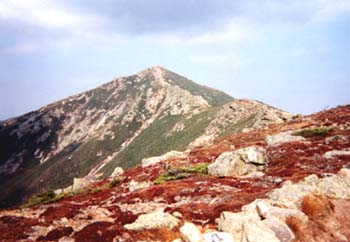 Franconia Ridge (photo by Pam Simmons)