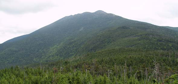Franconia Ridge, taken from Garfield Ridge Trail (photo by Webmaster)
