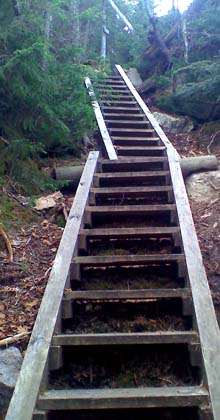 Ladders on the steep part of Osseo Trail (photo by Bill Mahony)