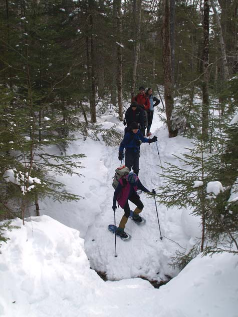 Sally, Jack, Reinhild, Scott, and Freddy in line for a steep gully crossing (photo by Webmaster)