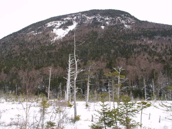 Mt. Kancamagus from the northern end of lower Greeley Pond (photo by Webmaster)