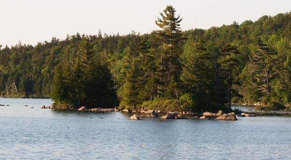 Islands on Eagle Lake (photo by Webmaster)