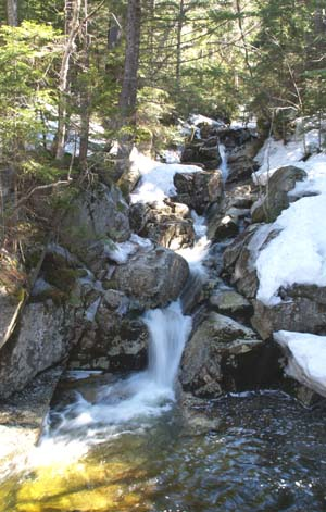 View of the cascades on Gibbs Brook, taken from the footbridge (photo by Webmaster)