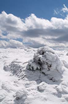 Snow-covered cairn on Webster Cliff Trail on the approach to the Mt. Piece summit (photo by Webmaster)
