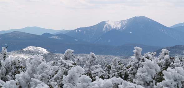 View of Signal Ridge and Mt. Carrigain from Webster Cliff Trail (photo by Webmaster)