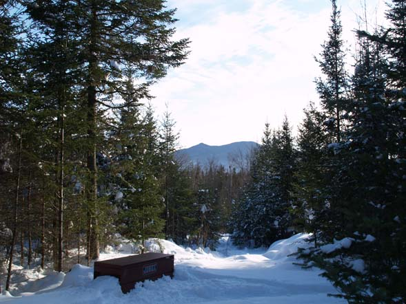 Winter view from Mud Pond Trail (photo by Webmaster)