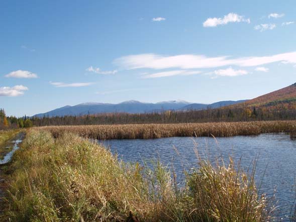 The Presidential Mountain Range from the Presidential Range Rail Trail (photo by Webmaster)