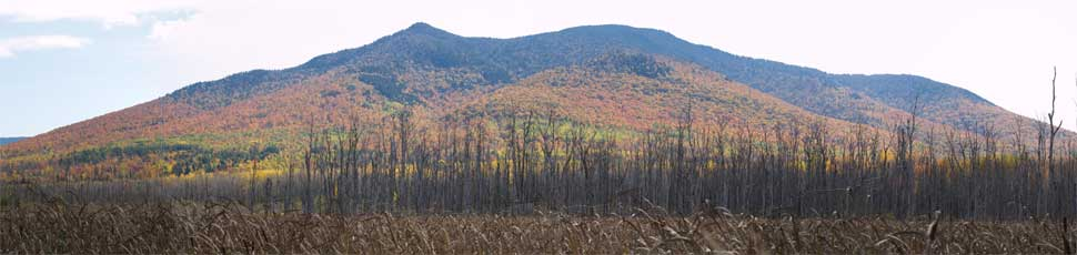 Cherry Mountain, taken from the wetlands area on the Presidential Range Rail Trail (photo by Webmaster)