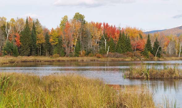 Cherry Pond and fall foliage, taken from Shore Path (photo by Webmaster)