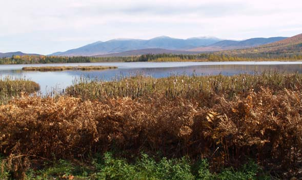 Cherry Pond, the Presidentials, and the Dartmouth Range (photo by Webmaster)
