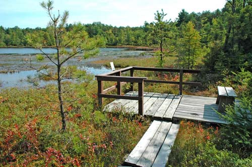 Observation platform at Ponemah Bog (photo by Ben Kimball for the NH Natural Heritage Bureau)
