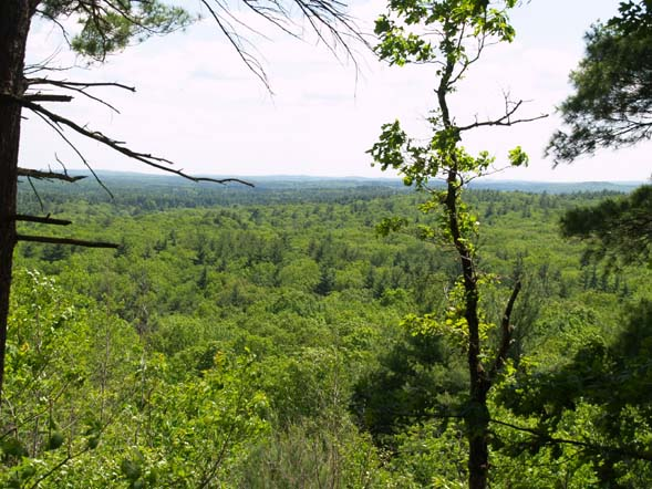 View from Cedar Hill (photo by Webmaster)