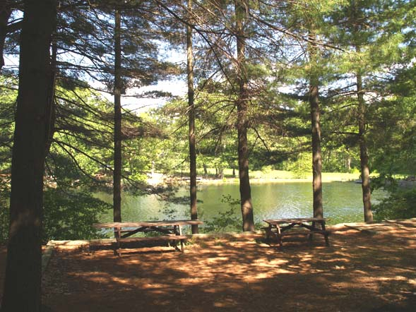Picnic area by Chickering Pond (photo by Webmaster)