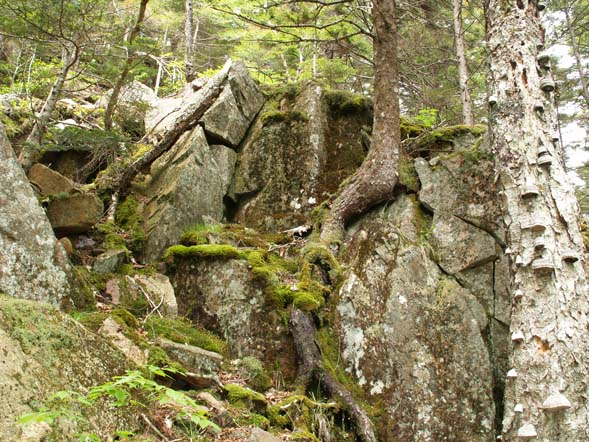 Ledge and boulder-strewn valley below Parkman Mountain (photo by Webmaster)