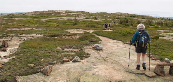 "The ""yellow-brick road"" on Sargent Mountain South Ridge Trail (photo by Webmaster)"