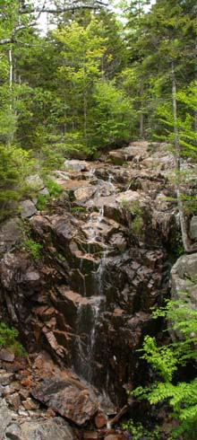Hadlock Brook Waterfall (photo by Webmaster)