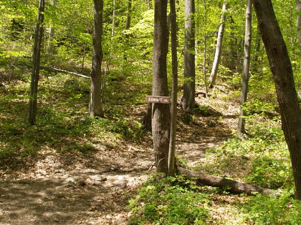 Old carriage trail leading to summit (photo by Webmaster)
