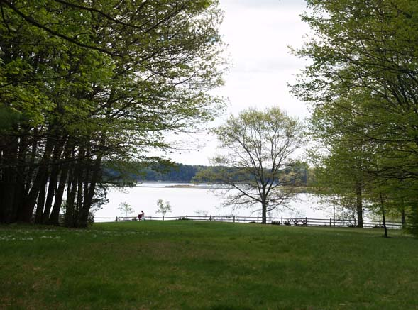 Little Bay and Oyster River waterfront area (photo by Webmaster)