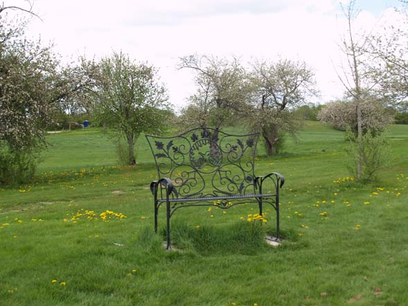 Ornate black bench in the apple orchard (photo by Webmaster)