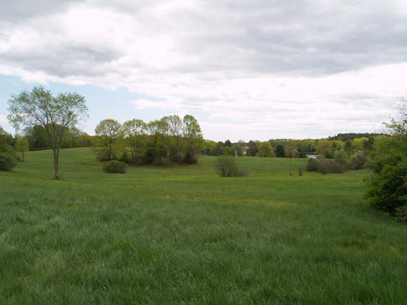 View of fields from the wagon (photo by Webmaster)
