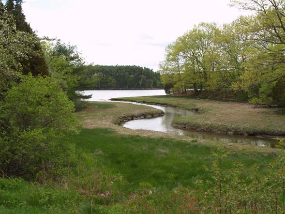 Waterway and Little Bay / Oyster River (photo by Webmaster)