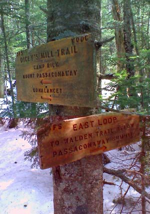 Trail signs at the junction of Dicey's Mill Trail and East Loop (photo by Bill Mahony)