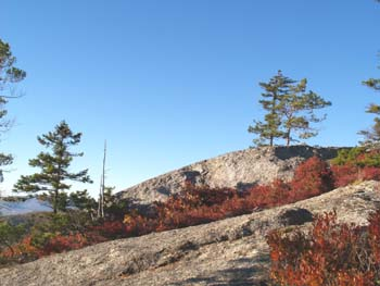 View of slabs from Trail #2 (photo by Webmaster)