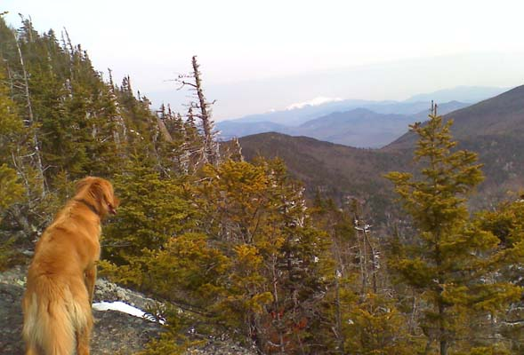 Hunter checking out the views from Whiteface's ledges with Mt. Washington in the background (photo by Bill Mahony)
